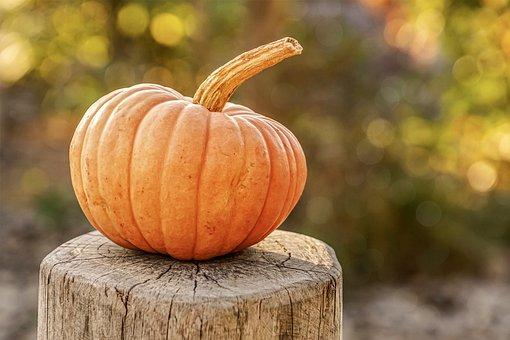 Menù autunno