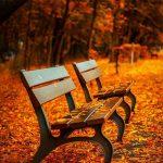 Equinozio d'autunno 2021: Cos'è?